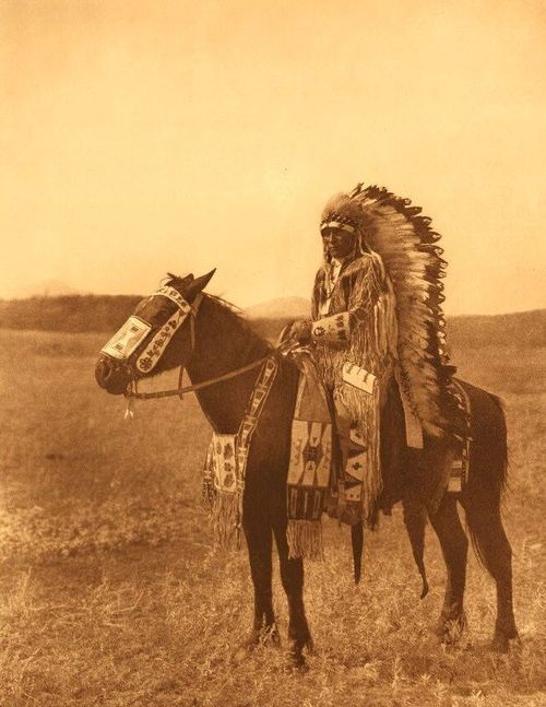 CANA FOUNDATION American Indian Horse BLOG